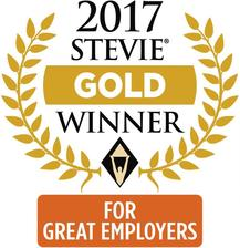 2017 Gold Stevie Award