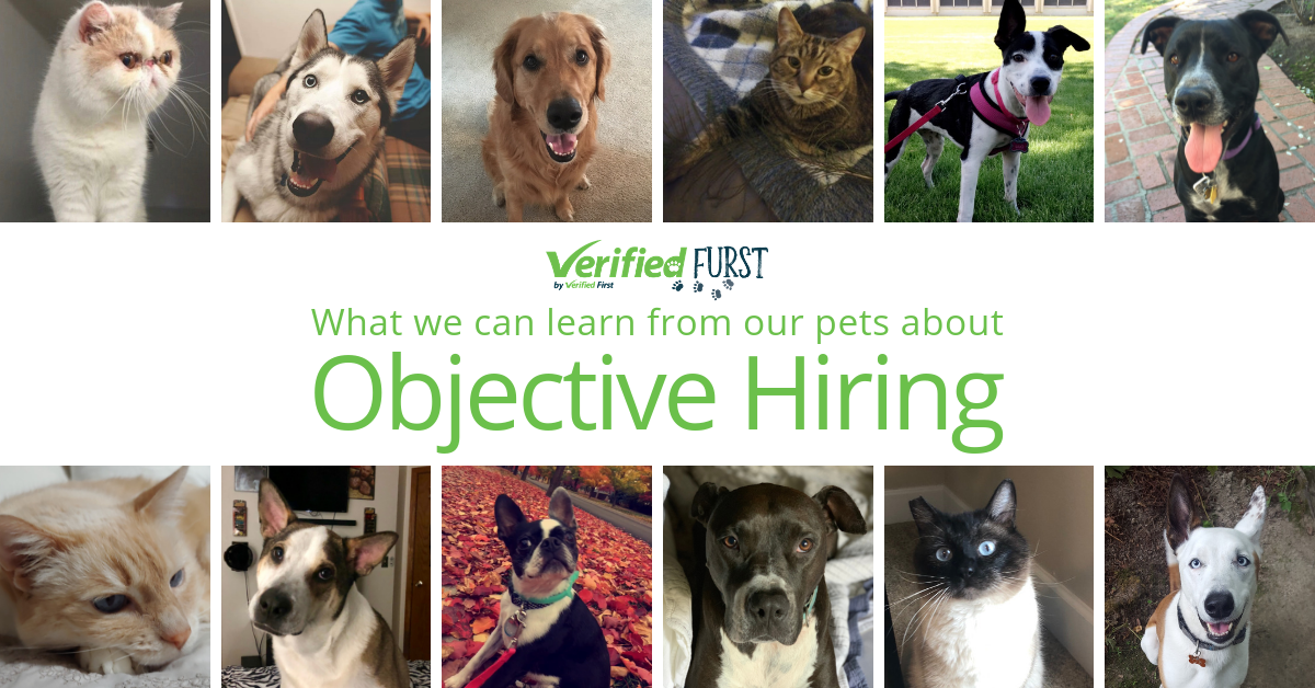 Objective Hiring: What We Can Learn From Our Pets